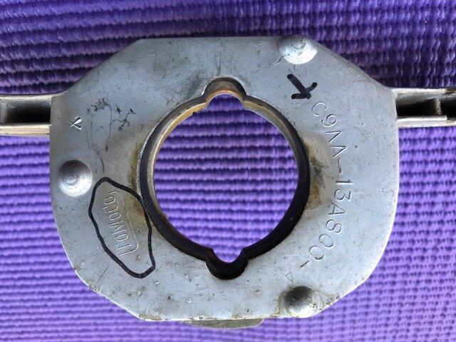 Mustang Horn ring3.JPG