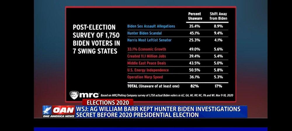Screenshot_20201215-145809_One America News.jpg